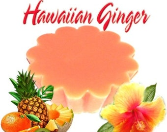 4 Hawaiian Ginger Tarts Wickless Candle Melts Fruit and Ginger Scent