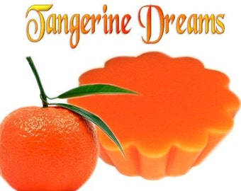 4 Tangerine Dreams Tarts Wickless Candle Melts Fresh Fruit Scent