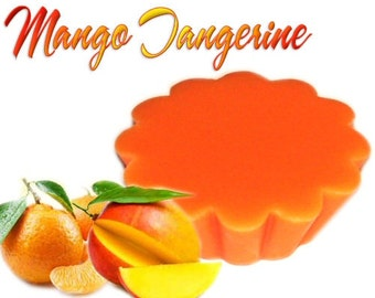 4 Mango Tangerine Tarts Wickless Candle Melts Tropical Fruit Scent