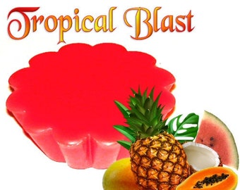 4 Tropical Blast Tarts Wickless Candle Melts Exotic Fruit and Coconut Scent