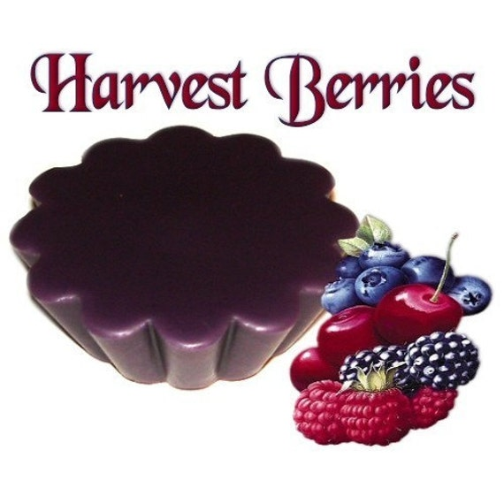 4 Harvest Berries Tarts Wickless Candle Melts Sweet Berry Scent