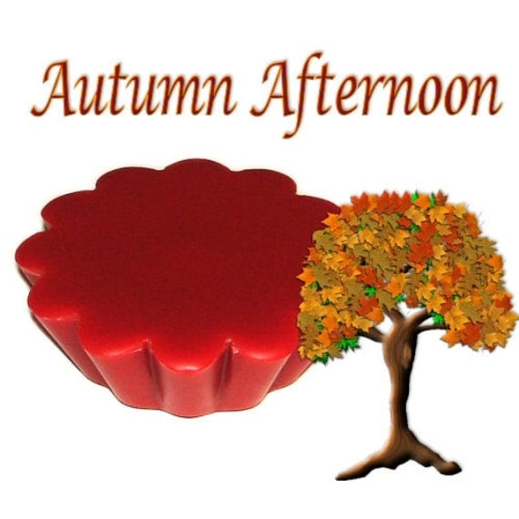 4 Autumn Afternoon Tarts Wickless Candle Melts Woods after Rain Scent