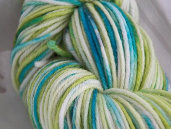 The POND superwash merino worsted weight yarn green and green mix Bare Sheep Yarn