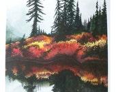 Rainbow Reflections - Limited Edition Fine Art Print