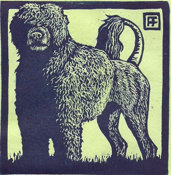 Portuguese Water Dog Linocut