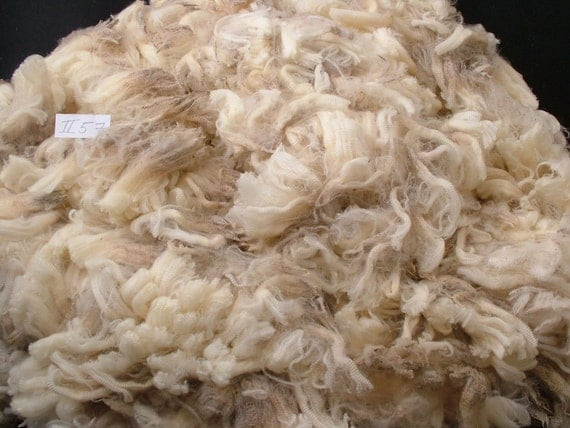 Freshly sheared very soft white pure Merino raw wool spinning felting fleece fiber