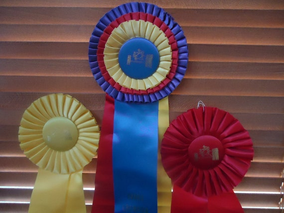 Vintage Horse Show Ribbons from Florida