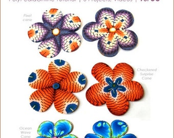 Polymer clay tutorial, Millefiori canes, Millefiore tutorial, FLOWER canes tutorial | Enchanted Garden | 3 Projects, PDF & Videos | Vol 36