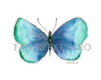 508 BUTTERFLY Digital Print Image Download