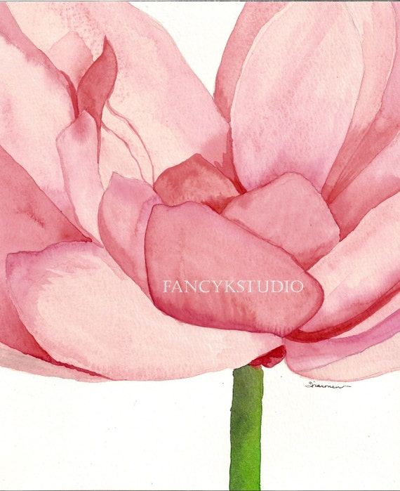 477 PINK FLOWER 8x10 Limited Edition Print