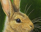 Bunny Rabbit Miniature Art by Melody Lea Lamb ACEO OE Giclee Print