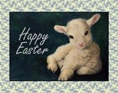Baby Easter Lamb Card by Melody Lea Lamb