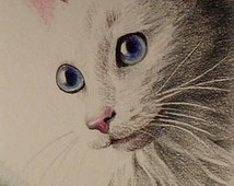 White Haired Blue Eyed Cat Art By Melody Lea Lamb
