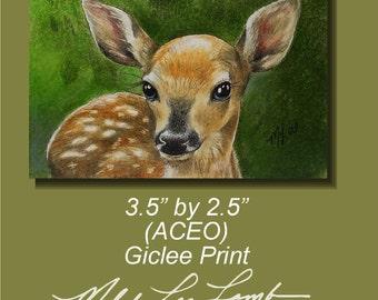 Deer Fawn Miniature Art by Melody Lea Lamb ACEO Print