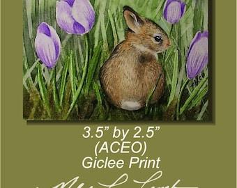 Cute Bunny Art Melody Lea Lamb ACEO Giclee Print