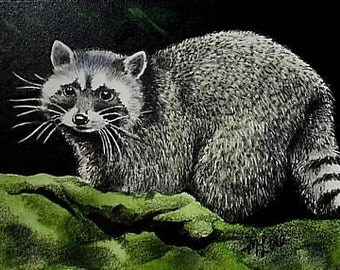 Raccoon Wildlife Art Melody Lea Lamb ACEO Print