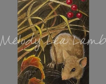 Tiny Mouse Art Melody Lea Lamb ACEO Giclee Print #418