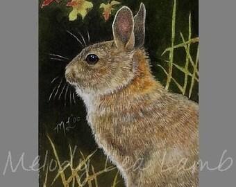 Miniature Art Bunny Rabbit Melody Lea Lamb ACEO Giclee Print