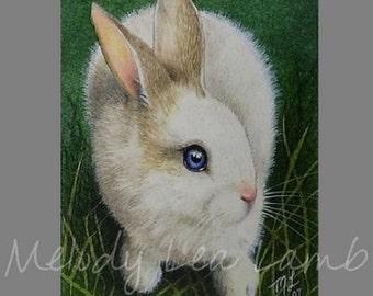 ACEO Miniature Art Print Bunny Rabbit Melody Lea Lamb