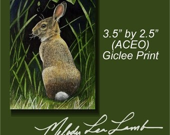 Bunny Rabbit Miniature Art by Melody Lea Lamb ACEO Print