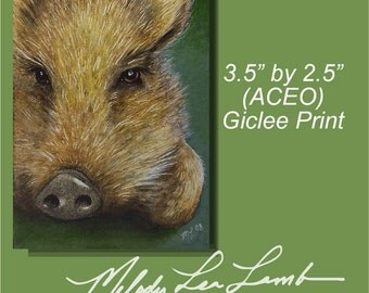 Pig Boar Melody Lea Lamb ACEO Giclee Print