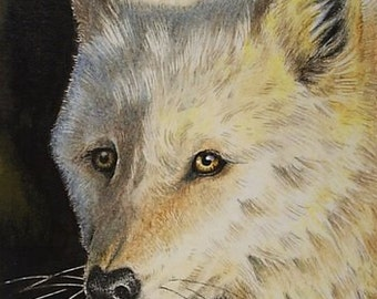White Wolf Miniature Art by Melody Lea Lamb ACEO Print