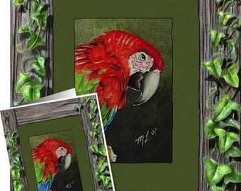 Macaw Parrot Bird In An Ivy Frame Card by Melody Lea Lamb