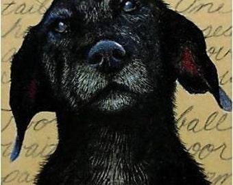 Labrador Dog Art All Profits to Charity ACEO Melody Lea Lamb A4C