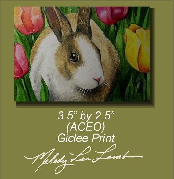 Bunny Rabbit Miniature Art by Melody Lea Lamb Animal Print ACEO