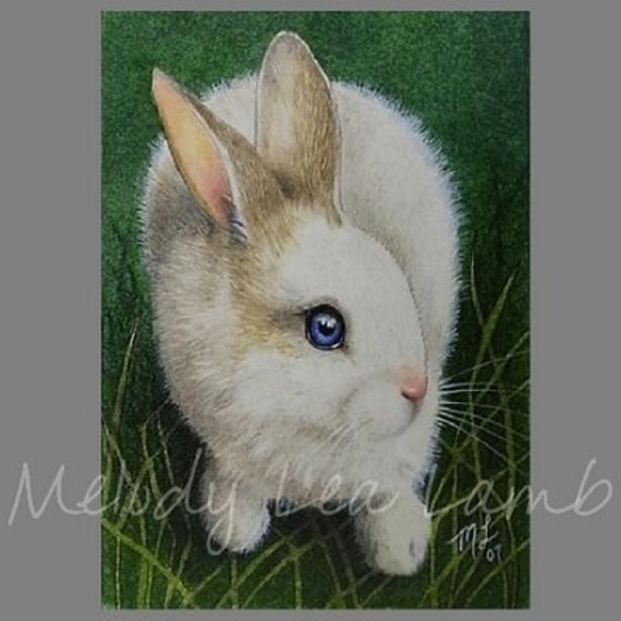 ACEO Miniature Art Print Bunny Rabbit Melody Lea Lamb