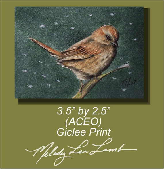 Brown Sparrow Bird Miniature Art by Melody Lea Lamb ACEO Giclee Print