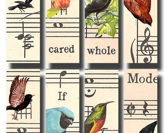 vintage birds and sheet music, a 1 x 3 inch microslide digital download, collage sheet no. 470