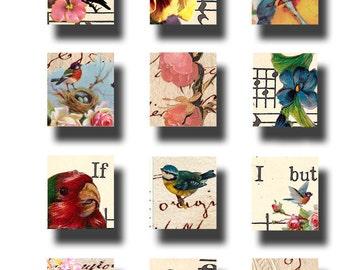 Birds and Flowers digital download, 75 x .83, scrabble tile art collage sheet no. 506