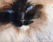 Ragdoll Siamese Cat Art Print of my Watercolor Ragdoll