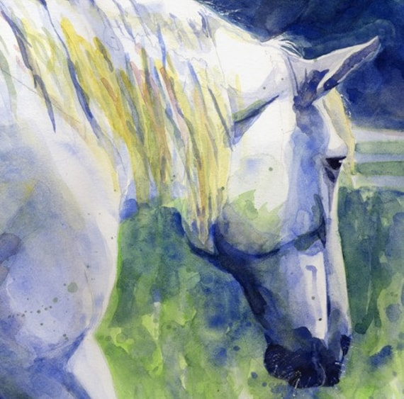 White Horse Percheron art Print of my Watercolor Painting Day Off Large Big Custom Hand Painted Blue Green Grey