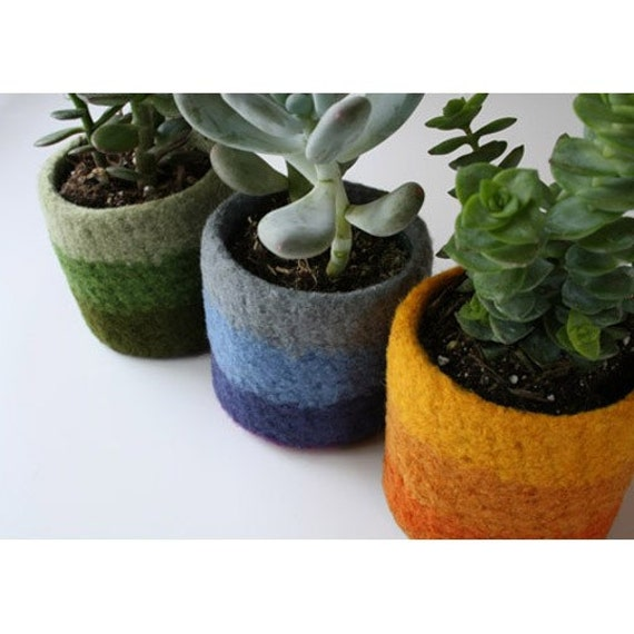 Sale Plant Cozy For 3 Inch Pot Felted Wool By Papaververt