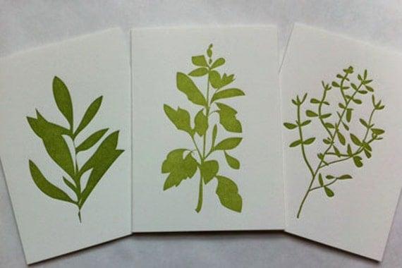 kitchen herbs note cards (multi set)