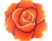 Polymer clay orange rose cane