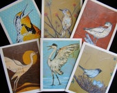 Bird Notecards - Boxed Set of 6