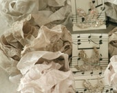 Crinkled Seam Binding  - Light Neutrals -  Beige -  Greige -  18 Yards , Shabby Ribbon