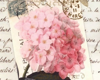 Gift Tags -  Vintage French Pink Hydrangea -  Wedding Favors -   by Bluebird Lane