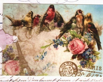 Bird Tags -  Vintage Style  by Bluebird Lane
