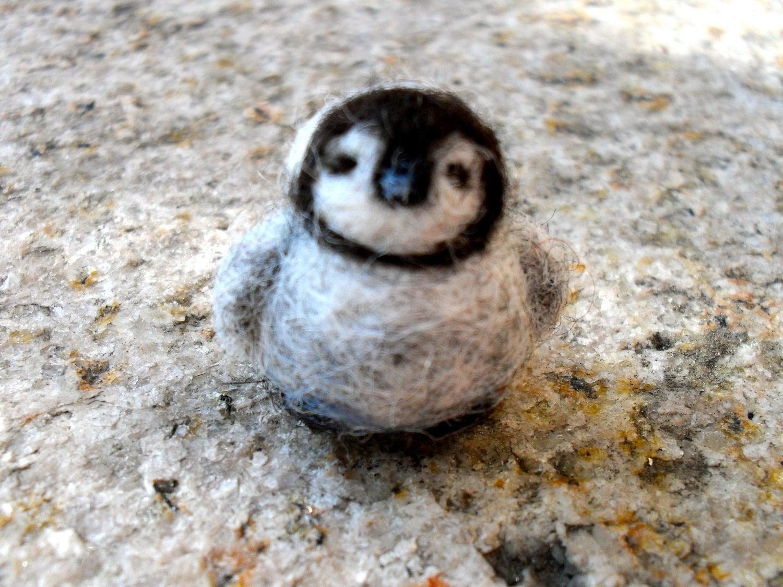Pics For Gt Cute Baby Little Blue Penguin