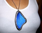 MORPHO DIDIUS - Real Butterfly Wing Necklace - Handcrafted In Glass