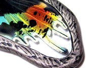 Butterfly Wing Jewelry Rainbow SUNSET MOTH Glass Necklace