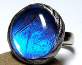 Real Butterfly Wing Ring Glowing Blue Morpho Glass