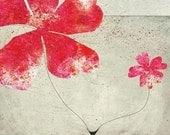 wild flower - Art - Illustration -  Children Wall Decor - Nursery Art Print - Pink Flower - Red - Grey