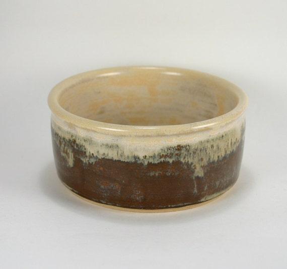 Coffee and Cream Cactus Pot