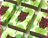 WOODLAND SPARKLY OWL Matchbox Goodies - Party Pack of (20) Favors - Recycled / Upcycled - In Green & Chocolate Brown - Eco Friendly