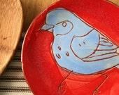 Silly bird plate